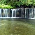 写真: 白糸の滝「高さ・3m、幅・70m