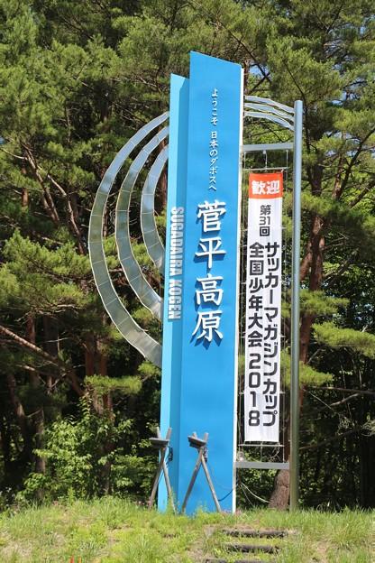 写真: 日本のダボス「菅平高原」