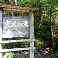 写真: 「唐沢の滝」名板