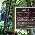 写真: 「唐沢の滝」説明版