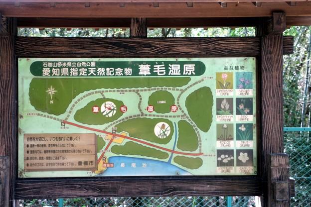 愛知県指定天然記念物「葦毛湿原」図