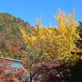 霊松寺景観