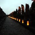 写真: 石仏百体観音に幻想的な写経燈籠
