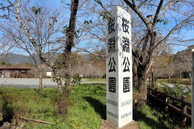 「桜淵公園」表示