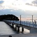 竹島橋と竹島