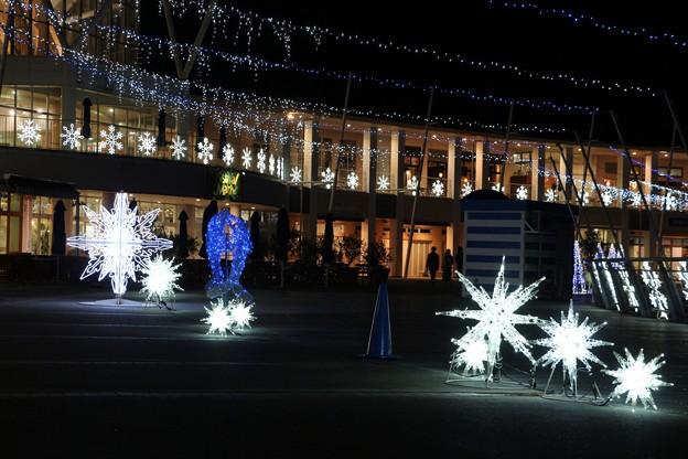 シーサイドショッピングモール広場の星のイルミネーション