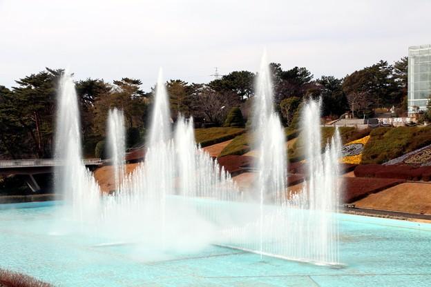 大噴水ショー