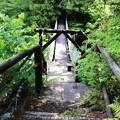 Photos: 中八丁吊り橋