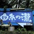 Photos: 白糸の滝案内板