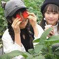 Photos: にゃん&るん