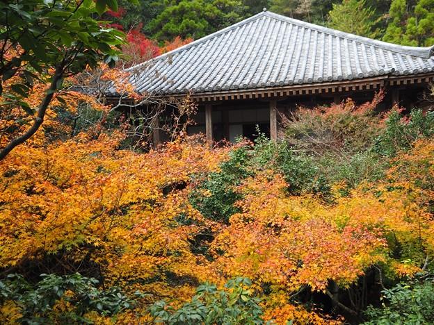 三滝寺(三滝観音)