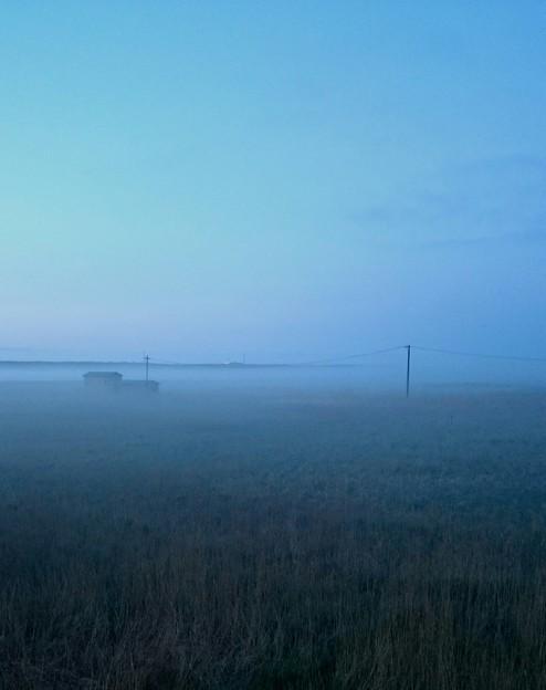 霧多布りの朝