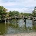 写真: 軽井沢旅行3 タリアセン ペイネ美術館