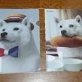 Photos: ソフトバンク お父さんくじ お父さんクリアファイル Ver.4