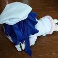 Photos: ラブライブ! メガジャンボ寝そベりぬいぐるみ 園田海未 Snow halation