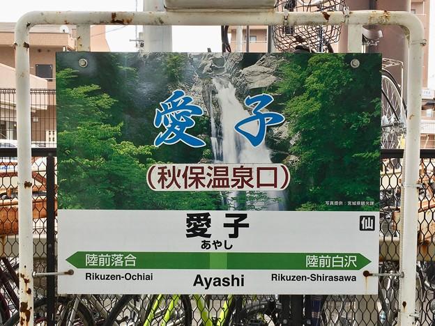 写真: 愛子駅 Ayashi Sta.