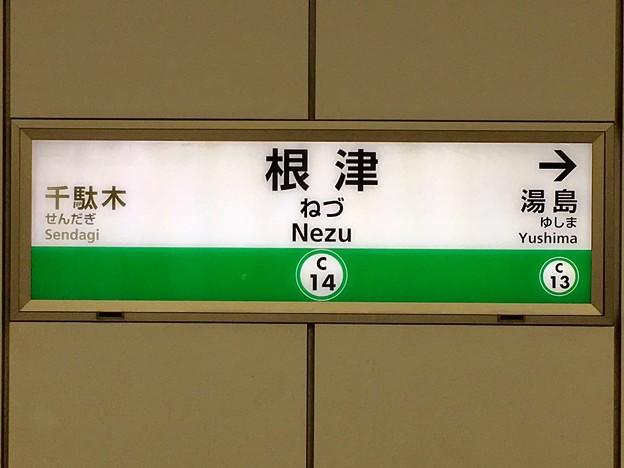 根津駅 Nezu Sta.