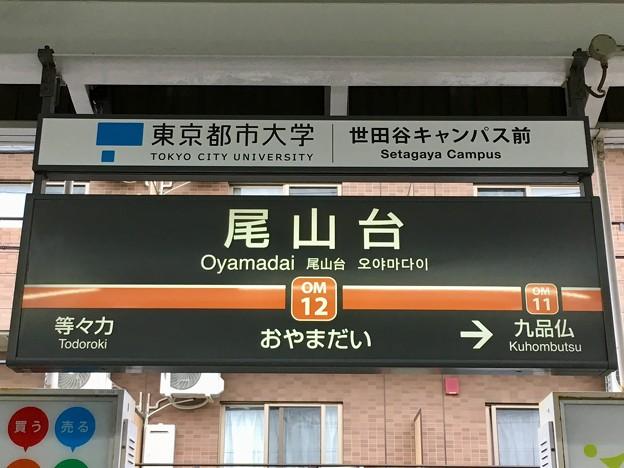 尾山台駅 Oyamadai Sta.
