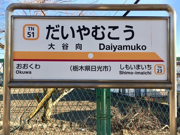 大谷向駅 Daiyamuko Sta.