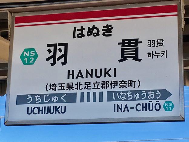 羽貫駅 Hanuki Sta.