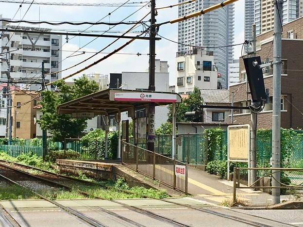 Photos: 向原停留場