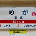 Photos: 妻鹿駅 Mega Sta.