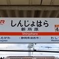 Photos: 新所原駅 Shinjohara Sta.