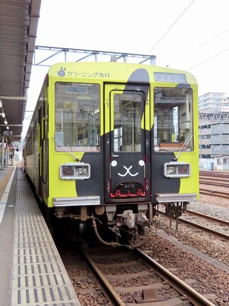 鹿島臨海鉄道6000形 (クリーニング専科ラッピング)