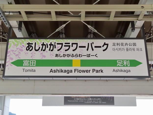 あしかがフラワーパーク駅 Ashikaga Flower Park Sta.