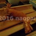 Photos: image029