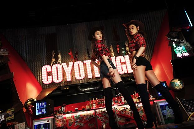 Photos: COYOTE