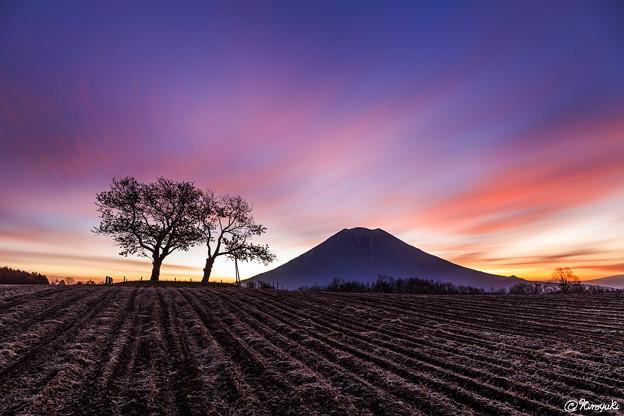 初冬と蝦夷富士