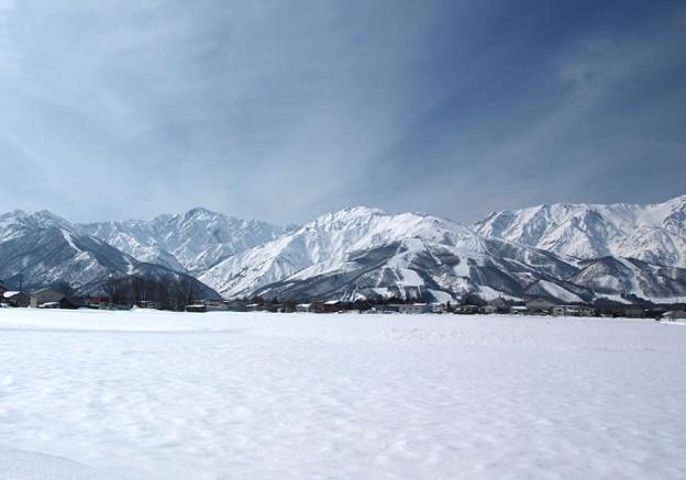 写真: 望む白馬の山々。