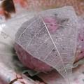 Photos: 桜餅、道明寺。