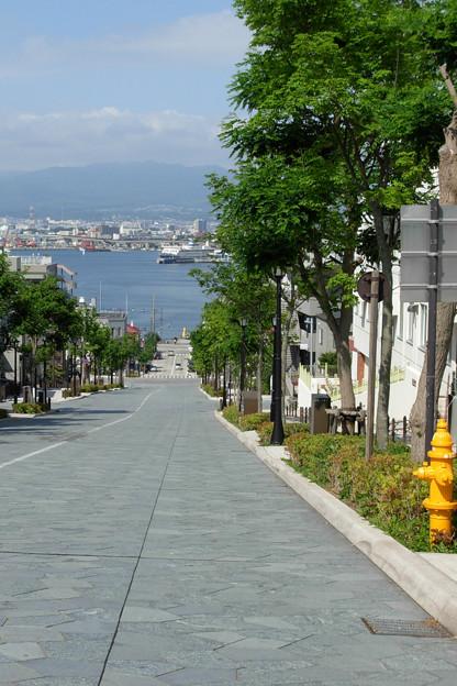 写真: 歩きたい八幡坂。