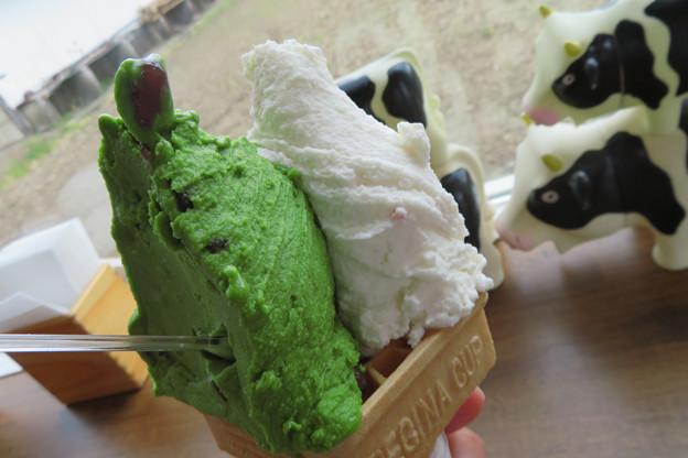 Photos: 抹茶ジェラート大納言添え&イチゴチーズケーキジェラート。