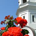 Photos: 教会の赤バラ。