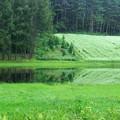Photos: そば畑に池出現。