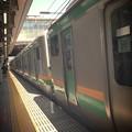 enjoying train ride...
