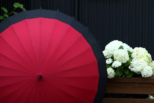 写真: 第133回モノコン 雨上がりのあとで。。