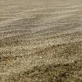 Photos: Sand Wave