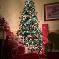 写真: Merry Christmas from howdy to yours!