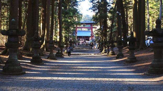 浅間神社の参道