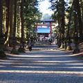 写真: 浅間神社の参道