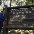 写真: 富士箱根伊豆国立公園