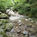 写真: ナメ小滝