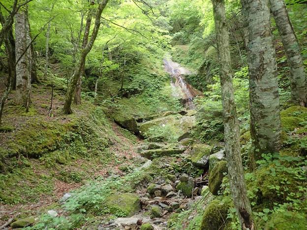左から枝沢 奥にスラブ滝(15m滝で引き返してこの枝沢へ