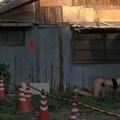 Photos: 町裏の響観