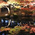 Photos: しあわせの村ライトアップ