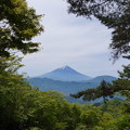 写真: 富士山を望む
